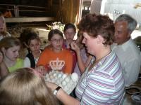 Frau Esser hatte für die Klasse 5c ein Bauernhofquiz vorbereitet. Gar nicht so einfach Roggen, Weizen, Gerste und Hafer auseinander zu halten und wie unterscheidet man nun ein Wachtel-, Hühner-, Gänse- oder Taubenei?