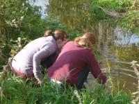 Zwei Schülerinnen des DM-Kurses untersuchen das Bachbett, in dem ihnen zugeteilten Abschnitt. Sie suchen nach Insekten, fotografieren Pflanzen und stellen die Korngrößen der vom Bach abgesetzten Sedimente fest.