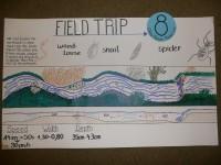 Eine Gruppe gibt sich besondere Mühe bei der Zeichnung und Vermessung ihres Bachabschnittes sowie bei Messung der Fließgeschwindigkeit.