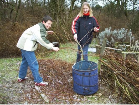 Gartenarbeit: Die abgeschnittenen Weidenzweige werden entsorgt